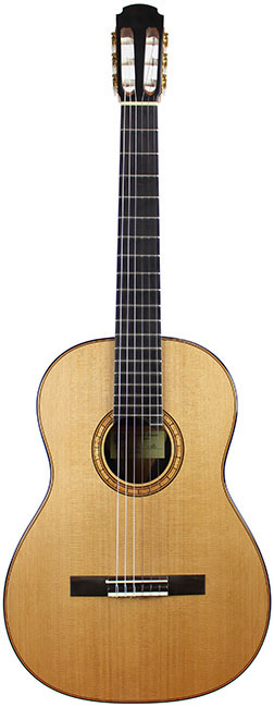 Classical Guitar Giussani-2008-small-front3.jpg
