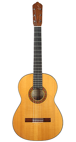 Flamenco Guitar ACFEF.jpg