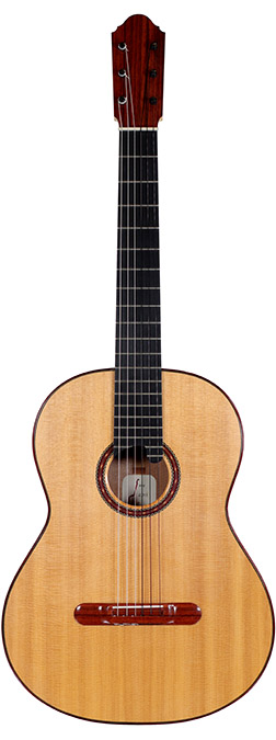 Flamenco Guitar Elwell-Michael-2011-small-front.jpg