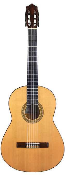 Flamenco Guitar Foye-2007-small-front.jpg