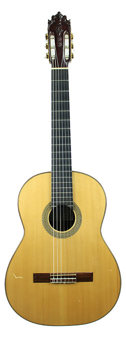 Flamenco Guitar Pedragosa-2009-small-front.jpg