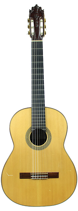 Flamenco Guitar Pedragosa-2009-small-front1.jpg