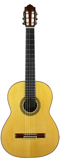 Flamenco Guitar Pukke-2009-small-front.jpg