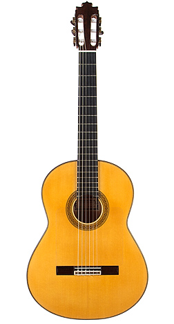 Flamenco Guitar barba 03