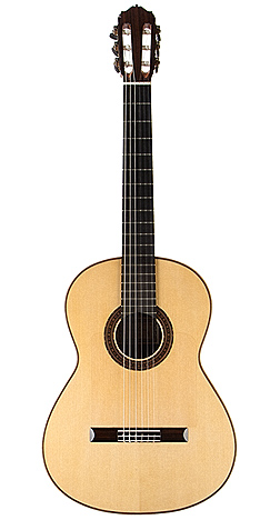 Flamenco Guitar green 06