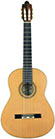 Guitar Bernal-2006-small-front.jpg